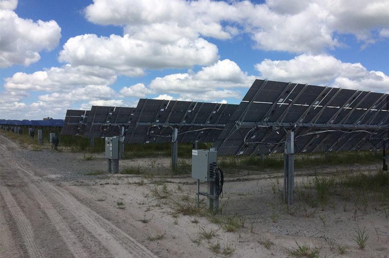 solar field photo